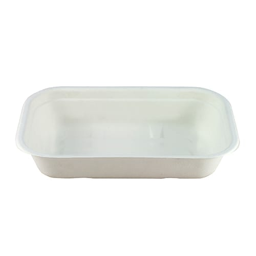 Bagasse container